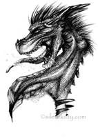 Random Dragon by silentkitty