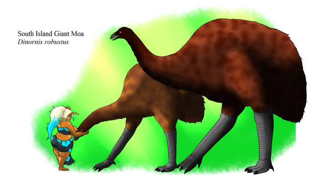 Bestiary - South Island Giant Moa