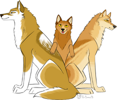 The Golden Trio by AirBones98