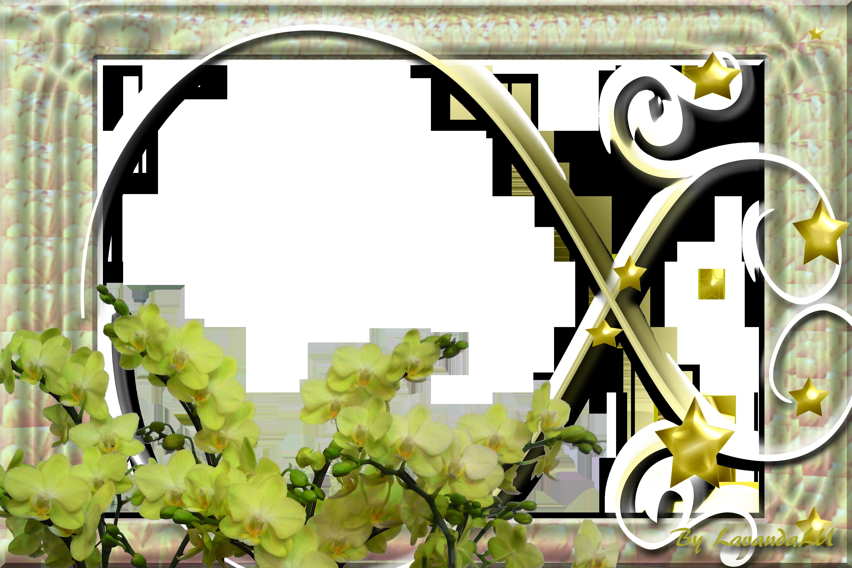 Lav 39 s png frames88 by lavandalu on deviantart for Window design png