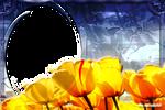 Lav PNG Frames132_1