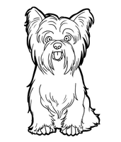 Yorkshire Terrier by CandyBeeLinearts