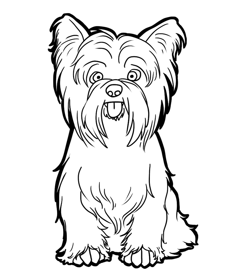 yourkie doags coloring pages | Yorkshire Terrier by CandyBeeLinearts on DeviantArt