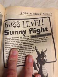 Spyro The Dragon - Boss Level, Sunny Flight?