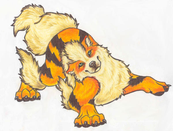 Arcanine by southam