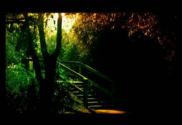 Hidden Garden by Ykraina