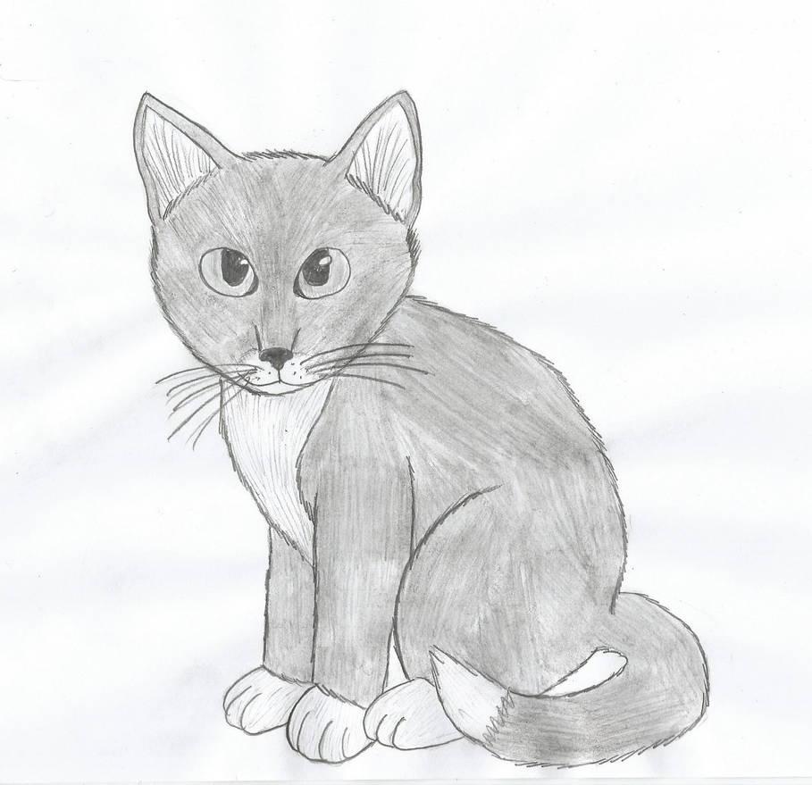A kitten pencil drawing by laukku2000 on deviantart