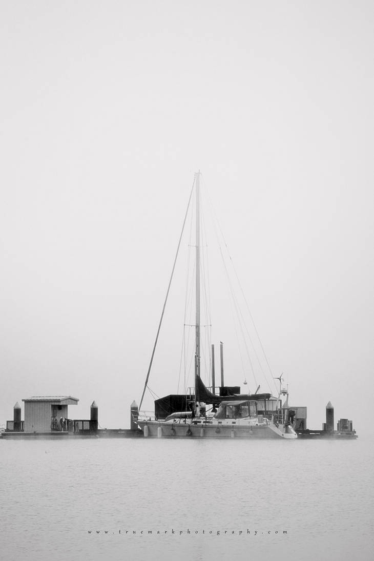 Fog Bound by TruemarkPhotography