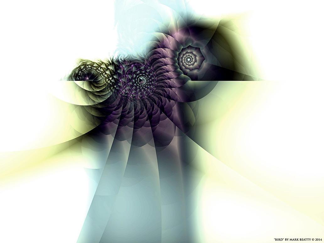 Bird by 2BORN02B