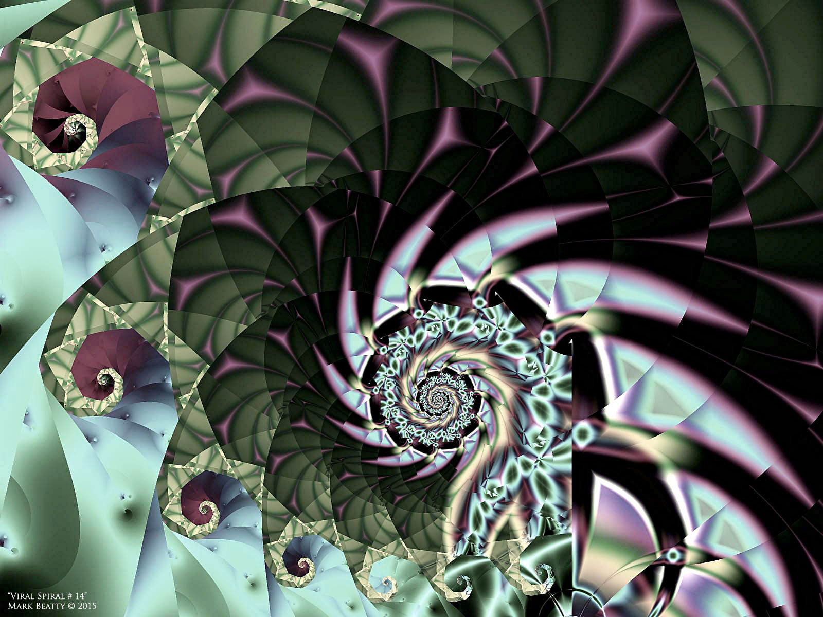 Viral Spiral # 14 by 2BORN02B