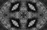 Night Owl by 2BORN02B