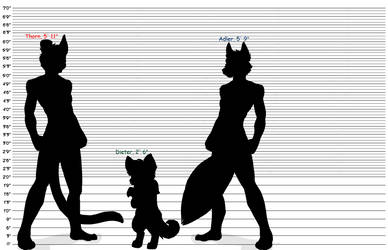 Male Fursona Heights by ELR93