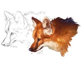 Maned Wolf by CorvusHound