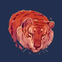 December Tiger