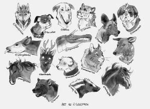 practise| Speed and species