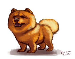 Chow chow by kayjkay