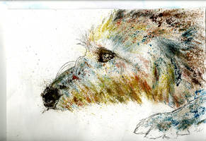 Watercolour Wolfhound by jamysketches