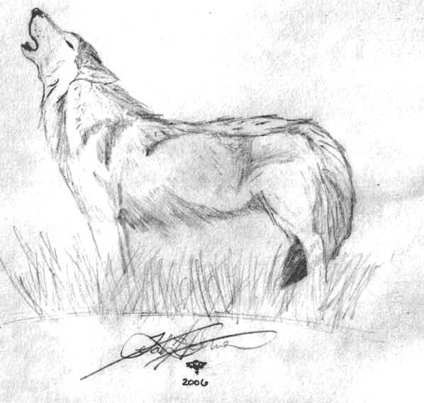 Wolf Bane