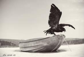 Eagle by EquusAhu