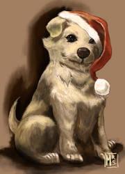 Chrismas Dog