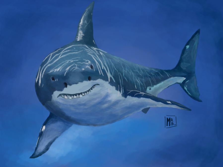 White Shark By Michi9911 On Deviantart
