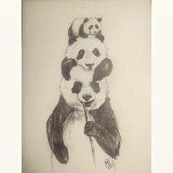 Some Pandas
