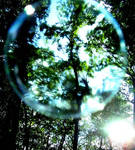 bubble by SimplyNiki