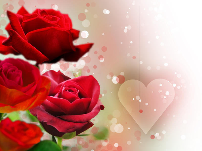 Image Result Forerflies With Roses
