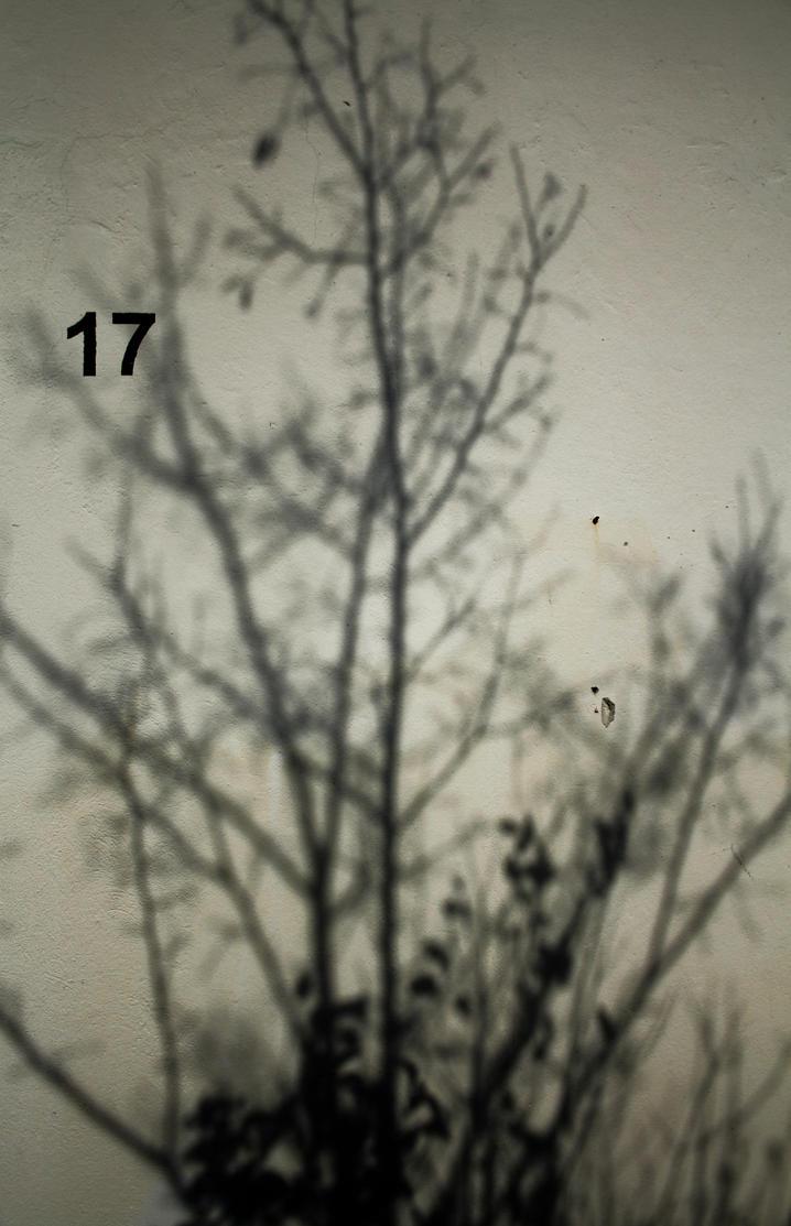 17 by iluvar