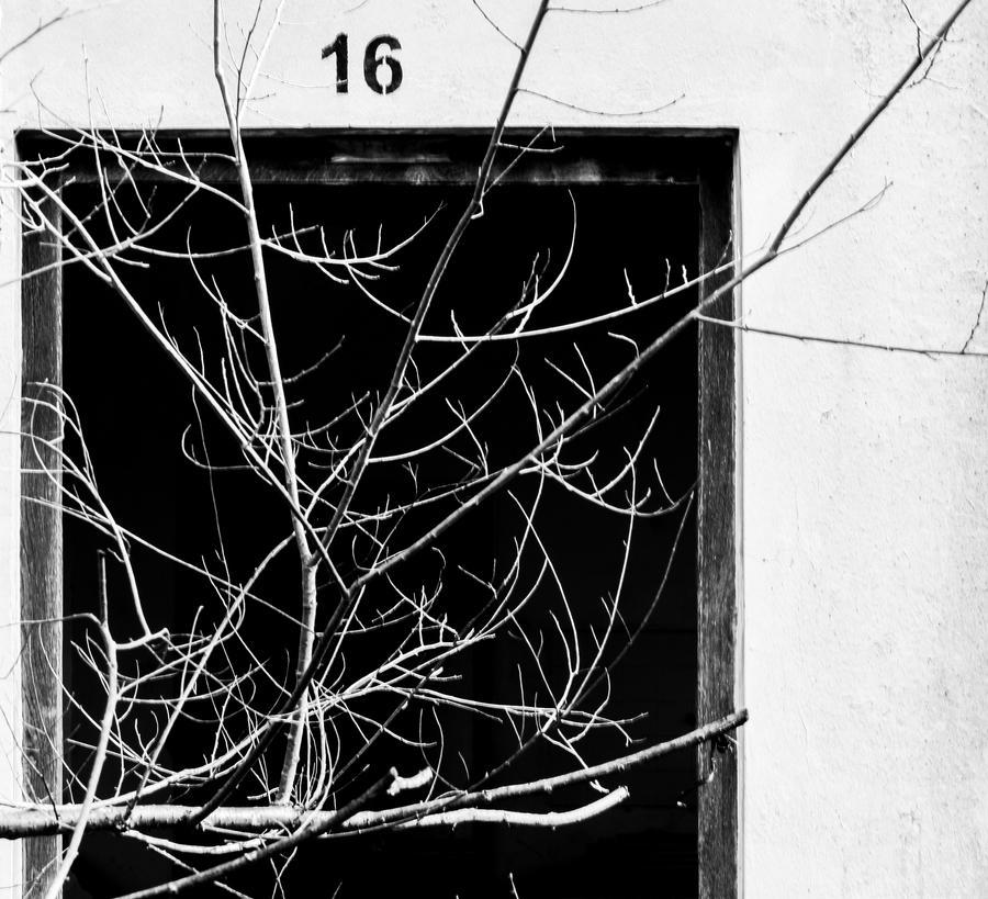 16 by iluvar