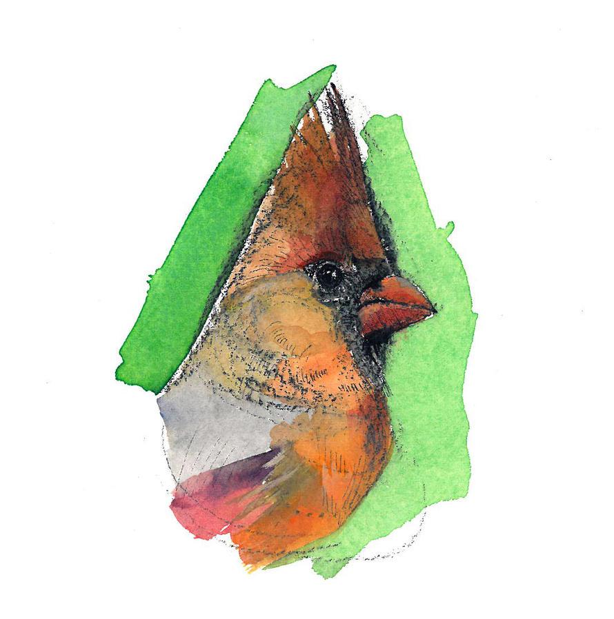Cardinal F by footinadream