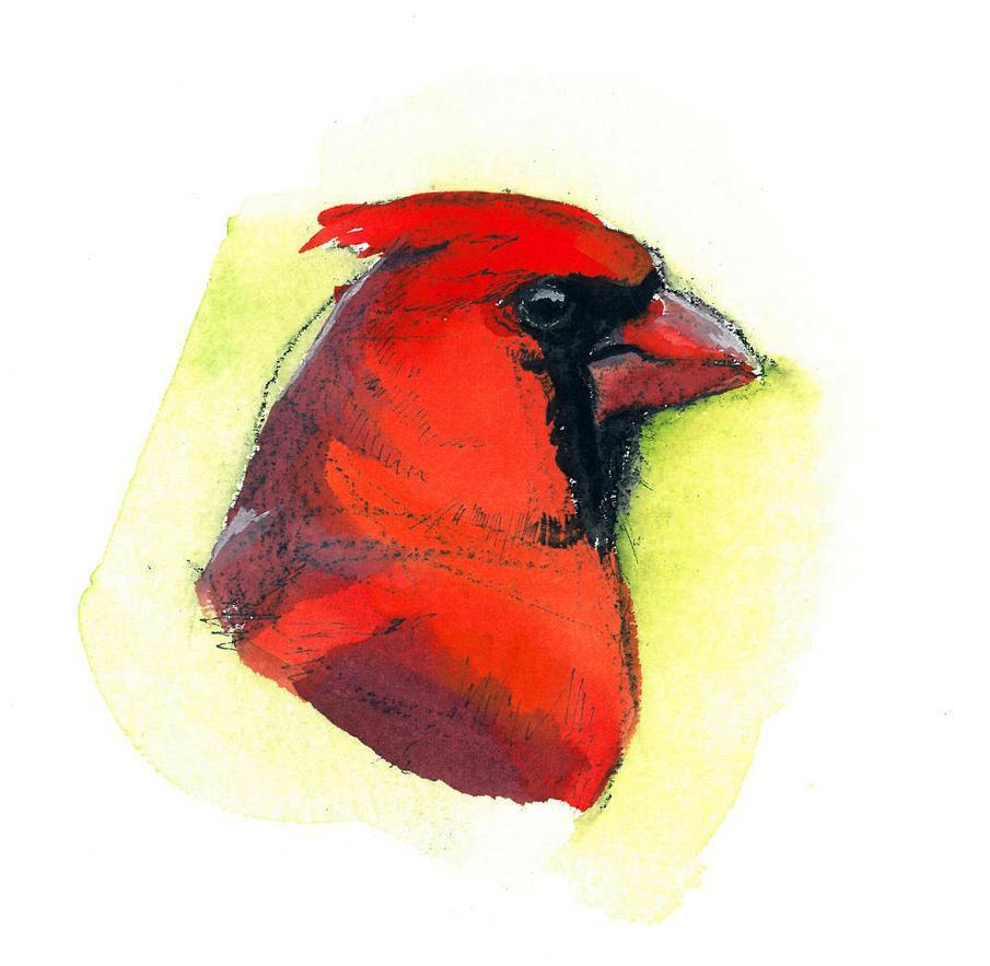 Cardinal M by footinadream