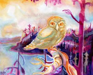 Owl Prince of Tofino