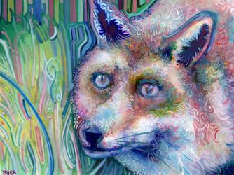 Friendly Fox by JoshByer
