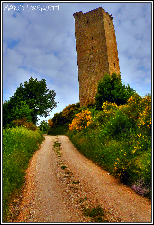 ALIFORNI DI SANSEVERINO MARCHE (MC) - THE TOWER by MarcoLorenzetti