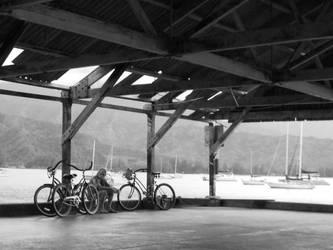 The Bike Man by Treehugger93