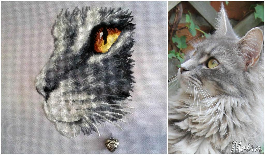 Moira cross stitch by Ammeih
