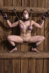 Horses's whore in stable by Michael Guez 219 by insulte-moi