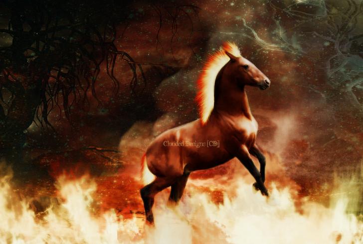 http://fc28.deviantart.com/fs27/f/2008/038/3/c/The_Fire_Horse_by_BanishedAngel.jpg