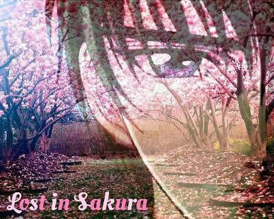 Lost in Sakura  by ZanetaChristine