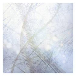 Transparent Silence by AZLL