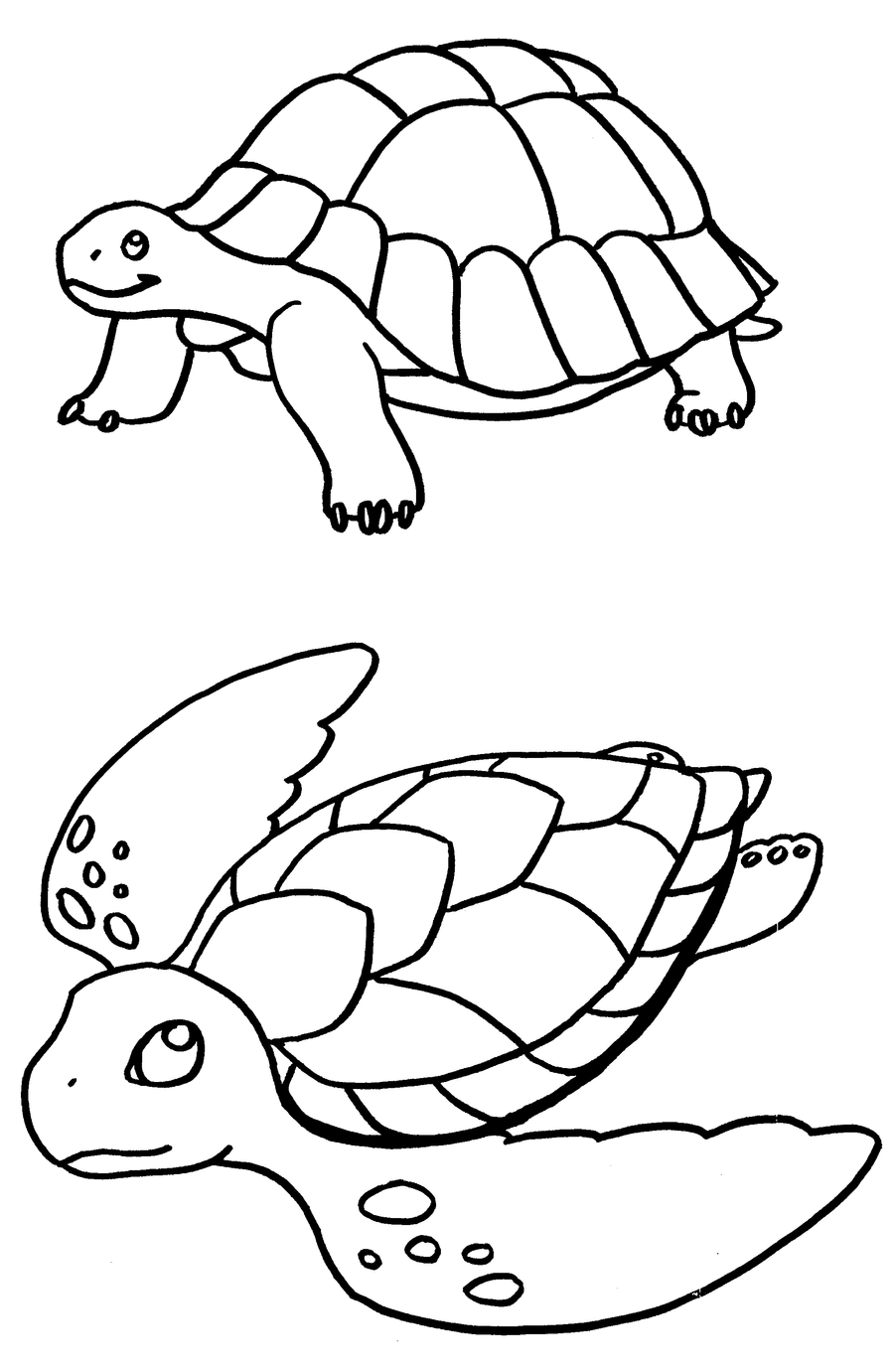 coloring pages turtles by terasullen on deviantart