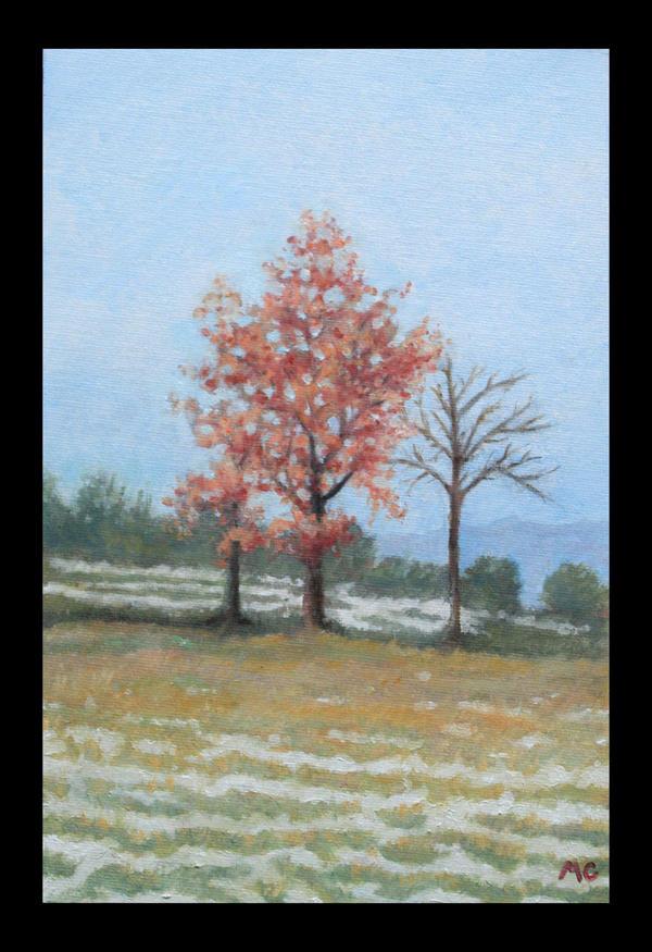 Winter in the Marche region by Mc-Art