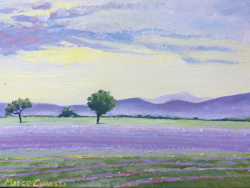 Valensole by Mc-Art