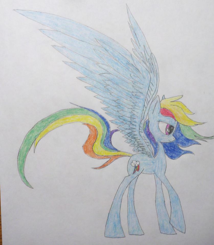 Rainbow Dash by konadh324
