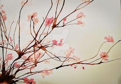 Cherry Blossom by amayajashin09