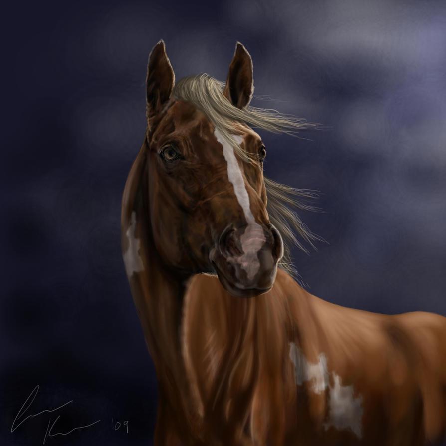 Horse Head by sunwolf29 on DeviantArt - 63.7KB