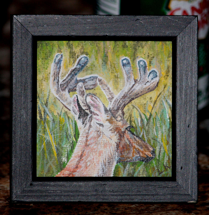 Tiny whitetail painting by sunwolf29