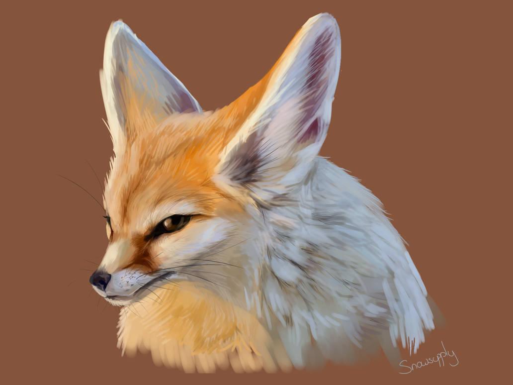 Fennec Fox by Snowsupply
