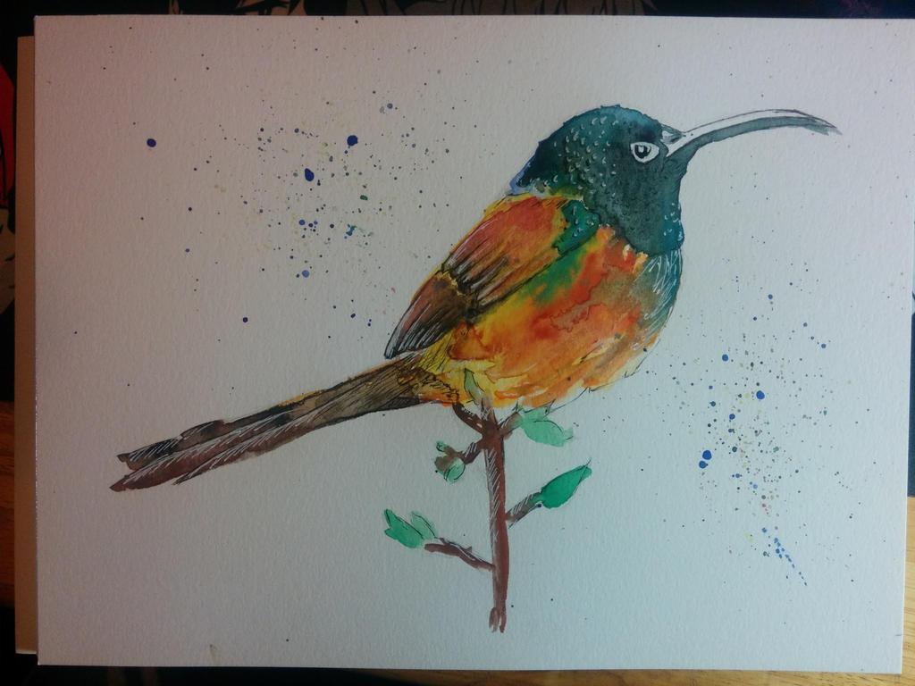 [Watercolor Practice] Bird by Spleko